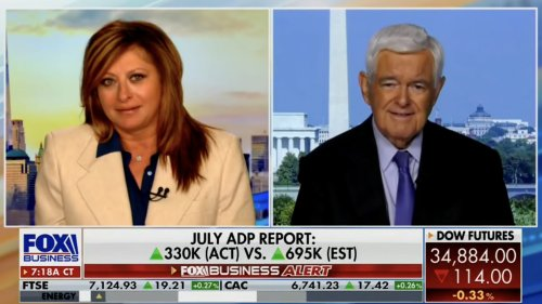 Newt Gingrich Goes Full 'Great Replacement Theory' on Fox