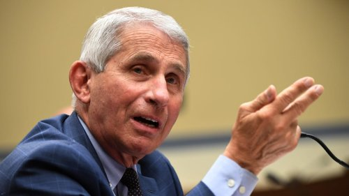 Health Agency Debunks Wild Claim That Fauci Carried Out Experiment to Terrify Monkeys