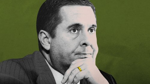Who Messed Up Devin Nunes' Campaign Records This Bad? His Mom.