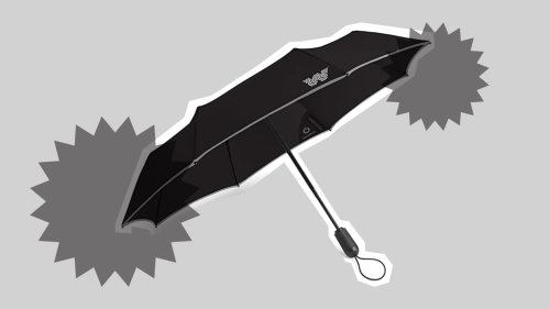 Created by a Famed Meteorologist, The Weatherman Umbrella Won't Collapse Under Pressure