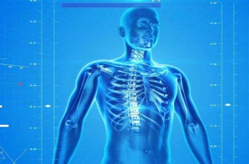 Doctors Can 3D Print Bones Directly Into Your Body
