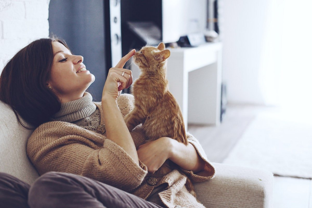 13 of the Weirdest Things Cats Do to their Owners