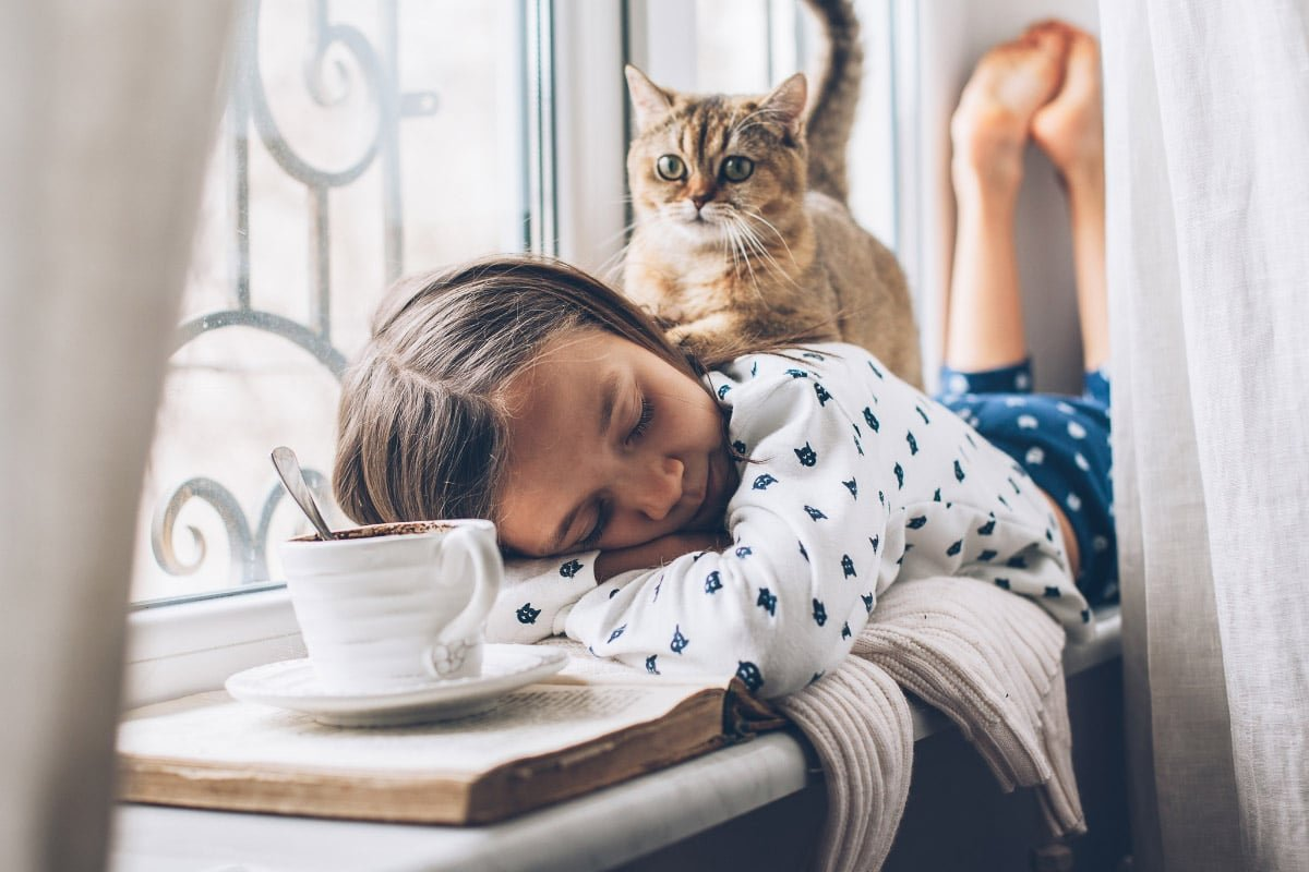 Why Does My Cat Follow Me Everywhere? 13 Top Reasons Why