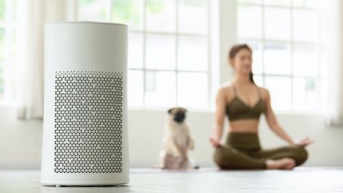 Air Purifiers and More Healthy Home Deals for Amazon Prime Day 2021