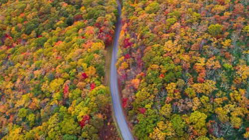 Which Are the Best Routes for Autumn Fall Color Road Trips?