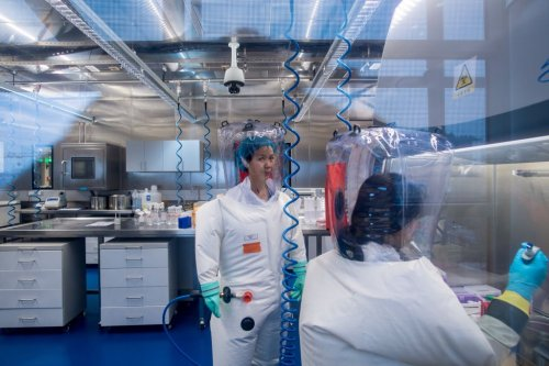 4 Ethics-Breaking Biological Experiments Touted By Chinese Scientists as 'World Firsts'