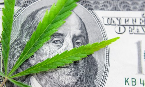 The Tide Is Turning: Investing Around The Schumer Cannabis Reform Bill