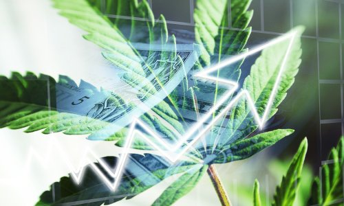 Cannabis Stocks: Here's When The Next Big Wave Is Coming