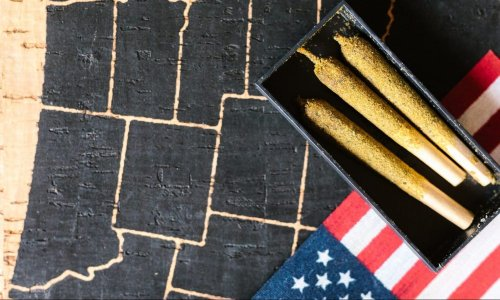 Does Big Business Provide A Better Look Into Cannabis Reform Than Capitol Hill?