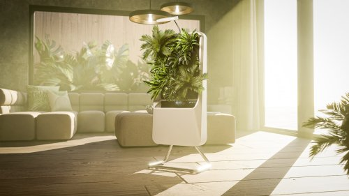 Respira smart air-purifying garden allows you to connect with nature at home