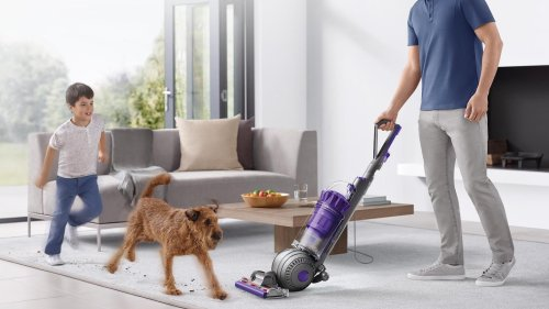 Dyson Ball Animal 2 pet vacuum picks up dust, animal hair, and ground-in dirt from floors