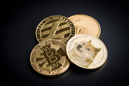 A dog-eat-dog world: the rise and fall and rise of Dogecoin   The Gentleman's Journal