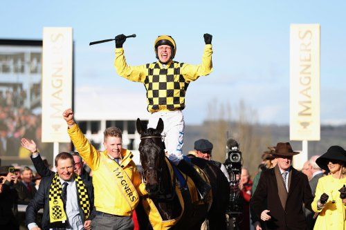 All roads lead to Cheltenham? Fitzdares begs to differ...