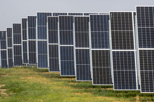 Alberta solar projects raise tensions over agricultural land use
