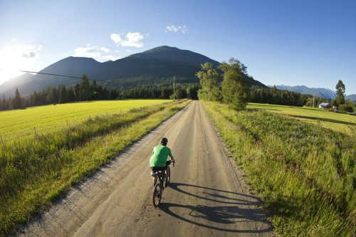 Thinking of hitting the road with two wheels this summer? Try these tips to plan a memorable bike trip