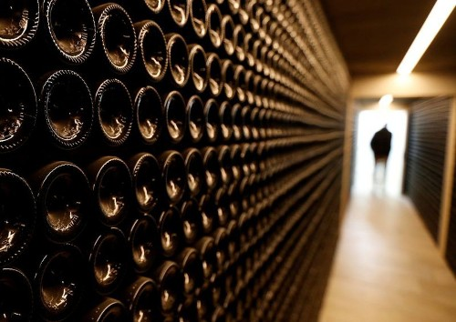 New offerings from both young and established ventures offer excitement in the world of wine