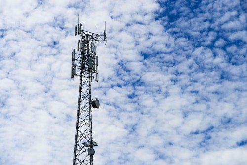 As major wireless auction looms, critics call on Ottawa to close policy loopholes