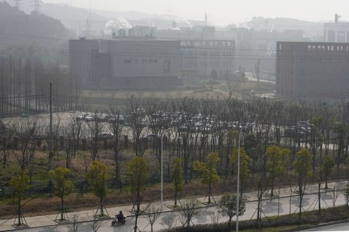 WHO investigators say COVID-19 virus unlikely to have leaked from Chinese lab