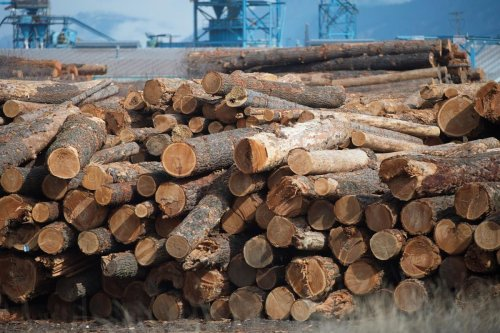 Opinion: Red-hot lumber prices ease pressure on Trudeau to reach softwood deal with U.S.