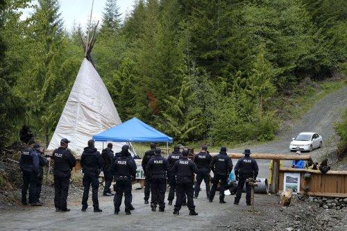 B.C. RCMP say Fairy Creek activists cut 18 trees to block access