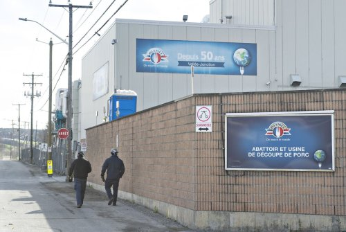 Union urges Olymel to delay reopening Alberta pork plant after COVID-19 outbreak