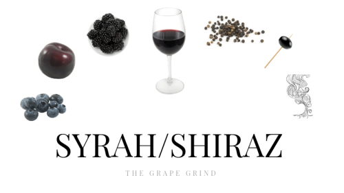 All you need to know about Syrah: A quick guide