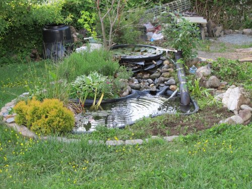 The Best Patio Pond Kits For The Backyard - 2021