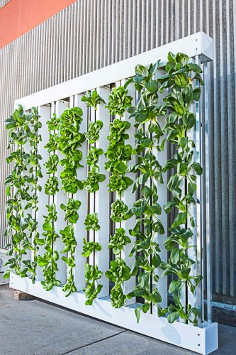 The Best Vertical Garden Kits And Planters For Home