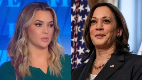 Fox News host says the quiet part out loud: Kamala Harris was chosen as VP because of her 'skin color'
