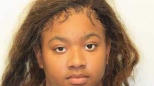 Ga. woman arrested for kidnapping twin babies, shooting mom - TheGrio