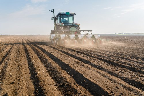 Soil Pollution: The Health Risk No One Is Talking About