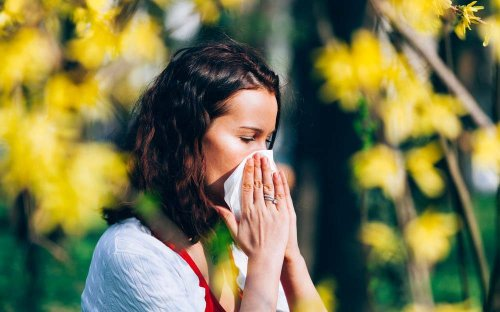 10 Things You Should Do Now to Make Spring Allergies Less Miserable Later