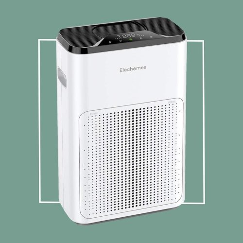 8 Air Purifiers for Better Air Quality, According to Allergists