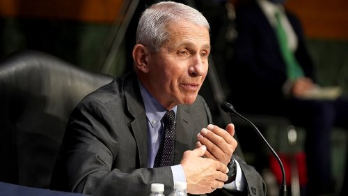 Fauci on Rand Paul: 'I just don't understand what the problem is with him'