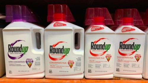 Appeals court upholds verdict against Bayer on herbicide Roundup