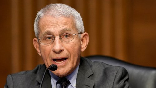 Fauci: Vaccinated people become 'dead ends' for the coronavirus