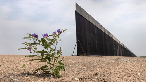Veteran accused in alleged border wall scheme faces new charges