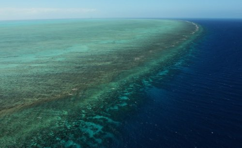 Controversy erupts over UN report on Great Barrier Reef