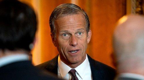 Thune endorses Herschel Walker in Georgia Senate race