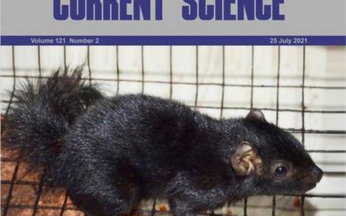 How a squirrel's identity crisis sparked off a scientific quest in Kerala