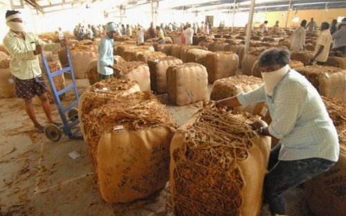 Tobacco farmers threaten to stall auctions from Monday