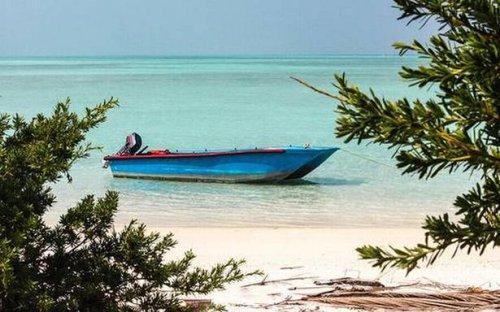 Despite scientists' caution, Lakshadweep admin goes ahead with mega beach villa project