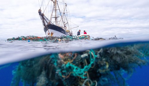 Unpacking 'Seaspiracy': What Do We Believe About Ocean Conservation? |