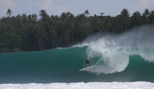 This Acclaimed Chef Absolutely Rips Nias Apart on a Twin Fin