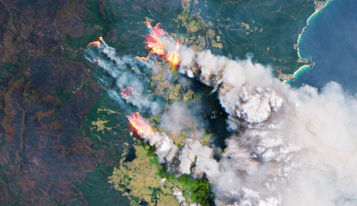 Smoke From the Black Summer Fires Created an Algal Bloom Bigger Than Australia