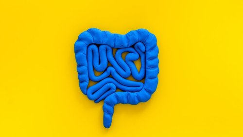 What are the best foods for gut health?