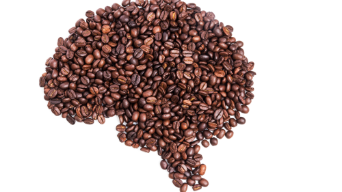 Your brain on coffee: Here's what really happens when you take a sip