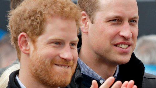 A Royal Expert Makes Bold Claim About William And Harry's Relationship