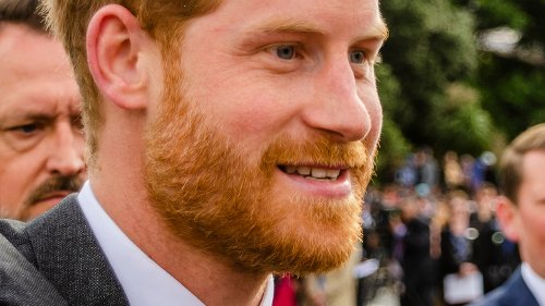 Royal Expert Has Plenty To Say About Harry After His Harsh Words For Prince Charles