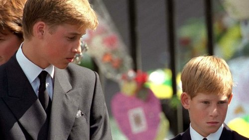 Prince William And Prince Harry Were Never The Same After Diana's Death